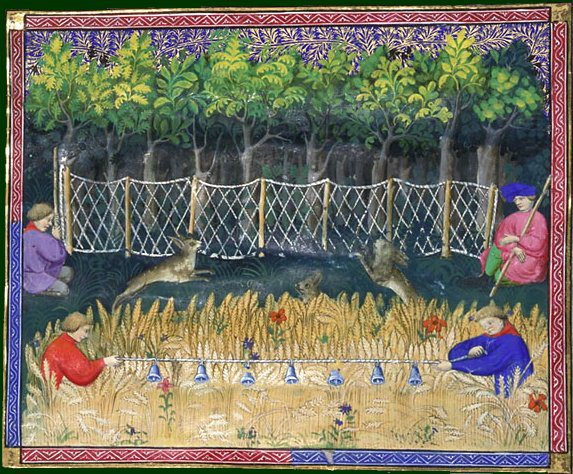 Image result for livre de la chasse Morgans