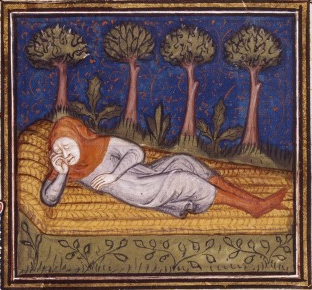 Henri Ferrieres sleeping on a strawmat in the woods