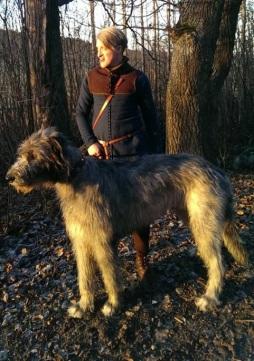 Medieval Hunting Dog Exploring The Medieval Hunt