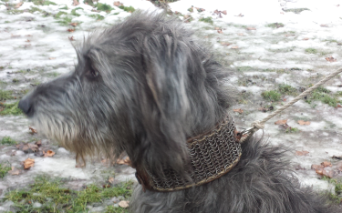 Boudica wearing her mailcollar of riveted round rings