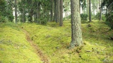 Hålväg, Medieval road in Sweden. Eriksgata, Sandhem